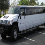 Local Limo Hire in Ashfield 5